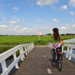 Metti un viaggio in bici, con uno sconosciuto