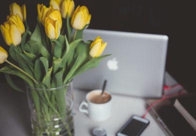 Creare un piano editoriale efficace e utile (a te e ai lettori)