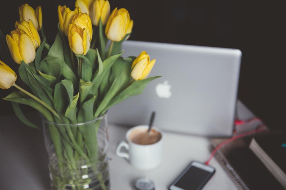 Cose che una blogger dovrebbe fare… e che io non faccio