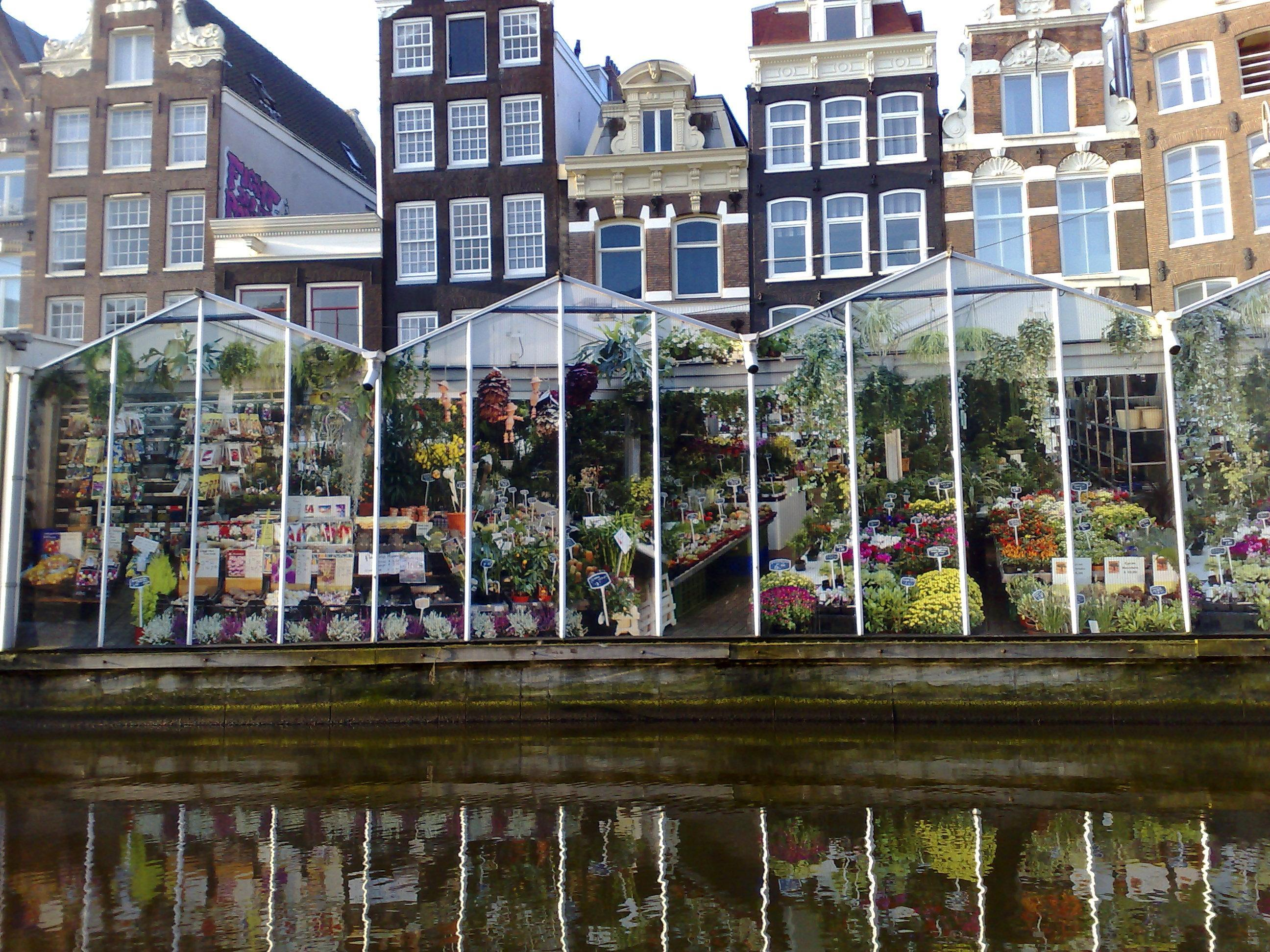 the best flower markets in europe - in my suitcase - amsterdam floating flower market