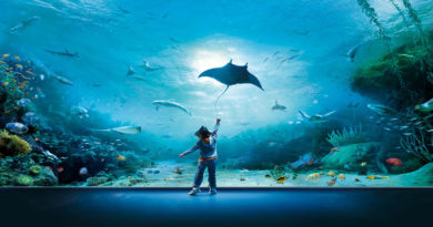 acquario-roma - family attracions - in my suitcase