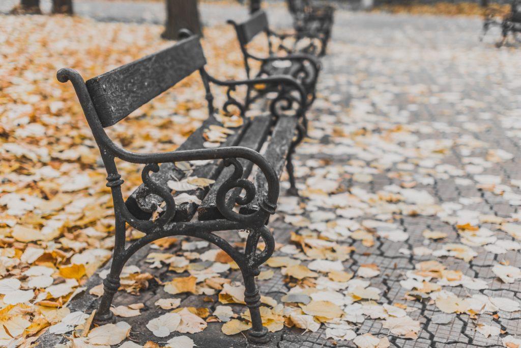 panchina_foliage_autunno