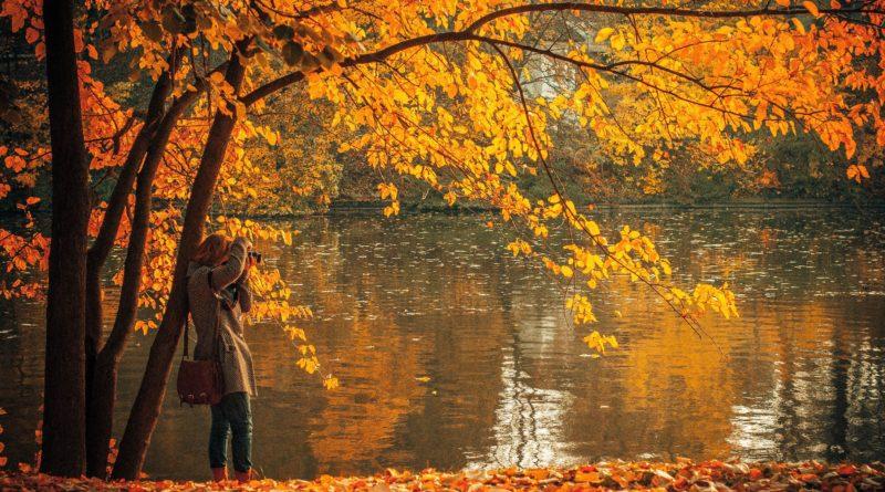 foliage_bucarest_viaggio autunno