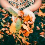 Foliage: Dove andare questo autunno per un weekend di (economica) bellezza
