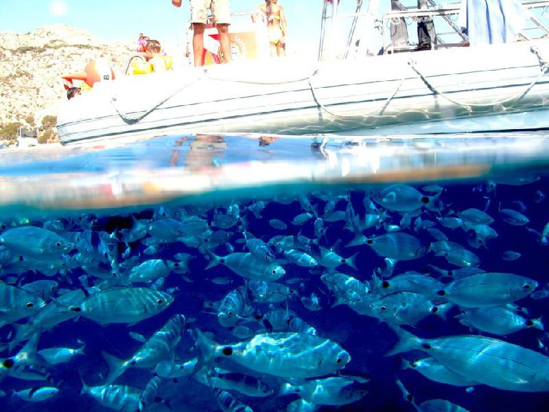 Vacanze esclusive in Sardegna: cosa fare ad Arzachena in Costa Smeralda