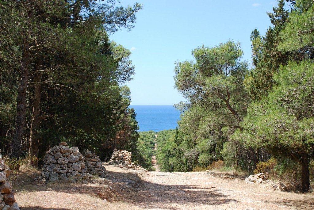 strada verso porto selvaggio_baia