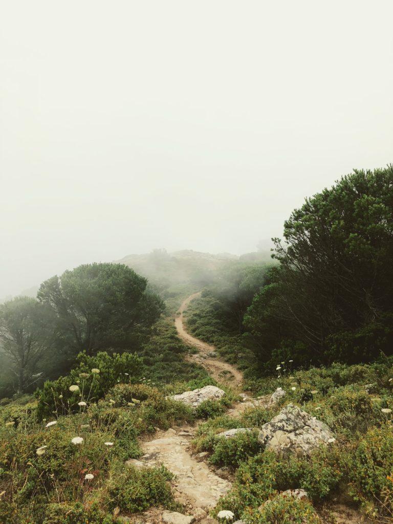 Percorso nella natura, strada sterrata Isola del Giglio