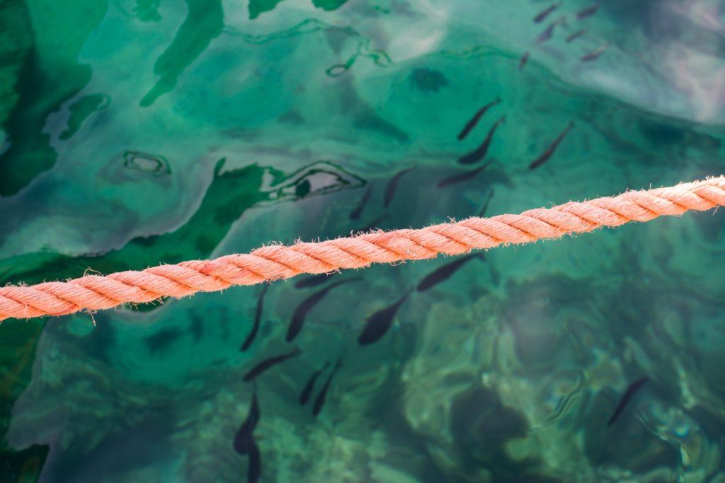 mare blu cobalto - arenelle Isola del GIglio