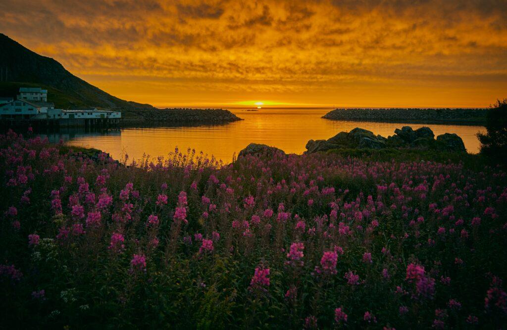 clima in norvegia_organizzare un viaggio
